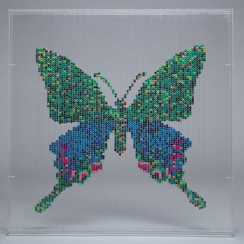 Natasja van der Meer, Butterfly, 2016