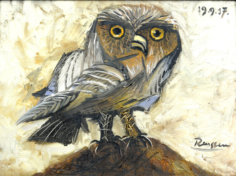 Erik Renssen, Little owl, 2017