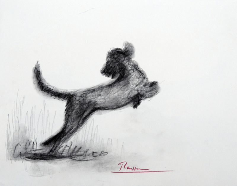 Erik Renssen, Size S | Dog 1, 2018