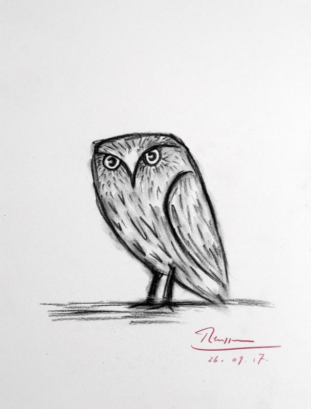 Erik Renssen, Stone Owl, 2017