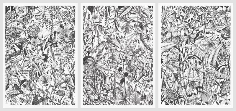 Tellas, Giardino Condiviso, 2020