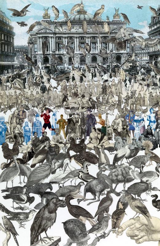 Peter Blake, Birds