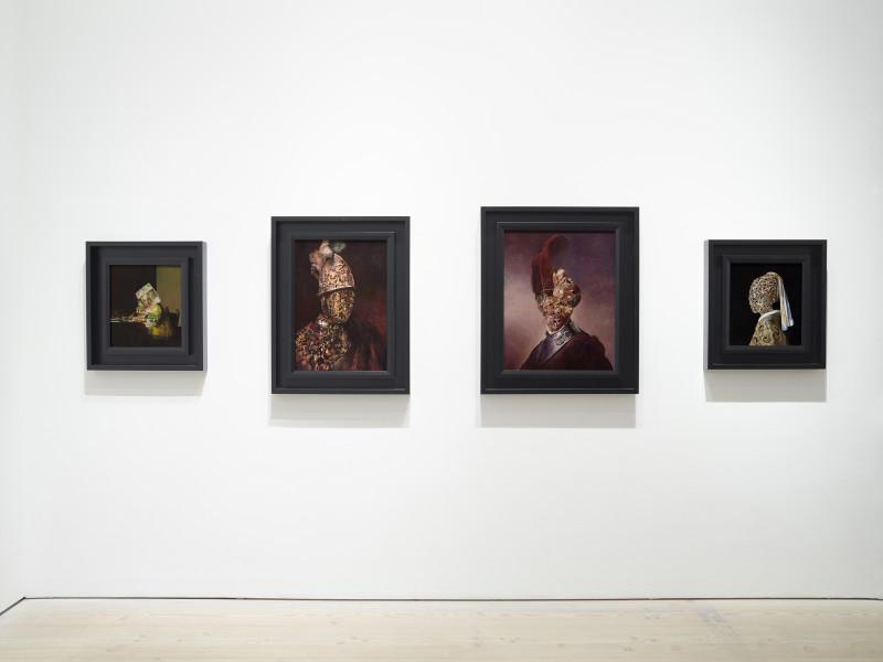 Wolfe von Lenkiewicz, Installation Shot 1, 2018