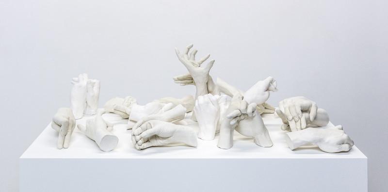 Marcus Coates, Extinct Animals, 2018