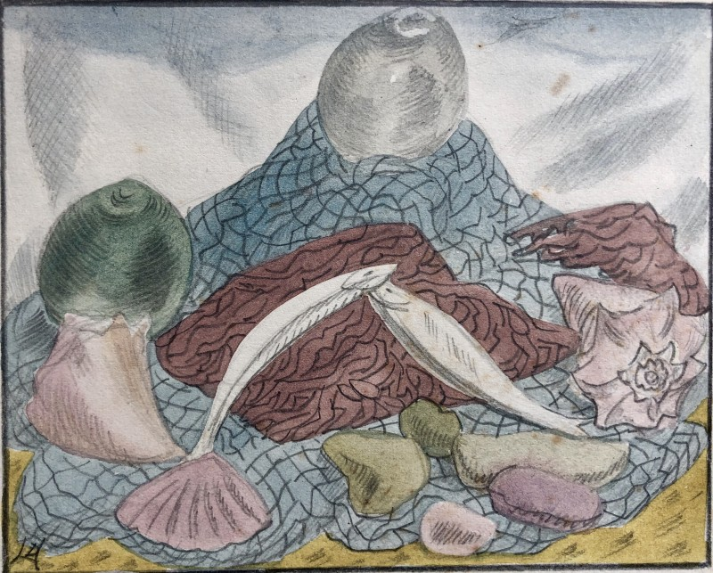 Doris Hatt, Still Life with Fish and Fishing Net II, 1930's