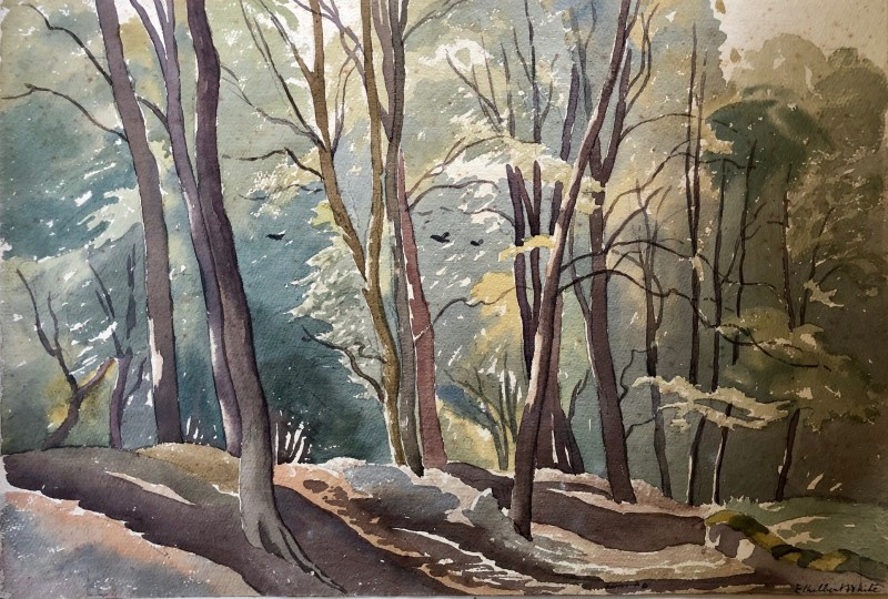 Ethelbert White, A Sussex Woodland, 1932