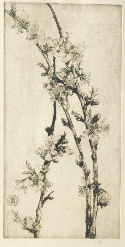 Anna Airy (1882-1964)Apple Blossom, 1926