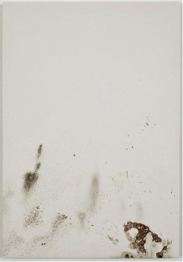 jodie-carey-untitled-bruises-11-2011.png