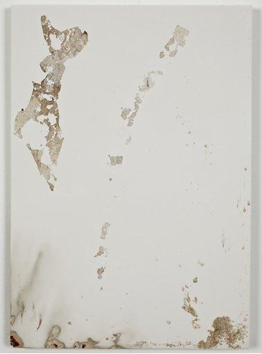 jodie-carey-untitled-bruises-13-2011.png
