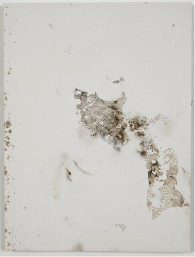 jodie-carey-untitled-bruises-4-2011.png
