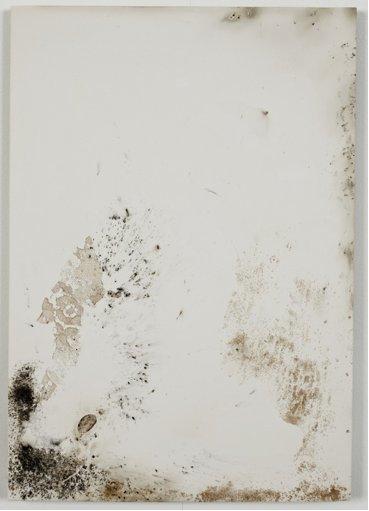 jodie-carey-untitled-bruises-7-2011.png