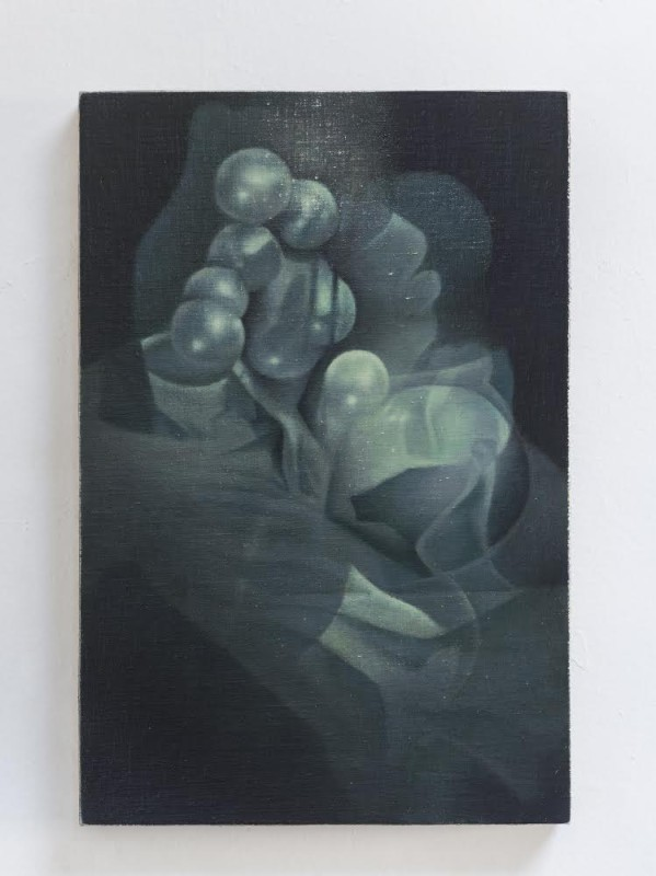 Untitled, 2014, oil on linen stretched over board, 46 x 31 cm.