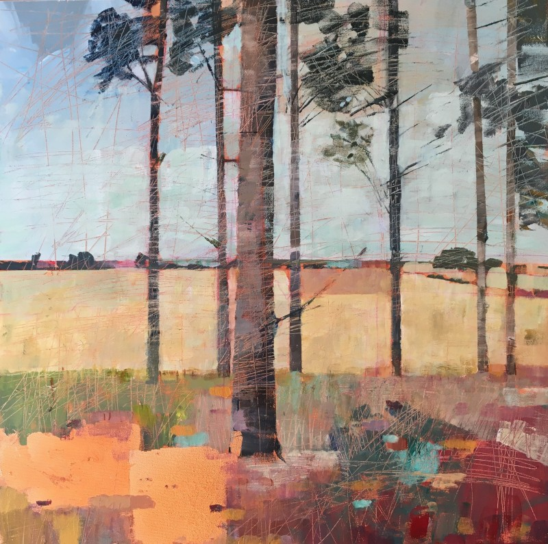 Sally Anne Fitter Evening pines 24 x 24 ins £985
