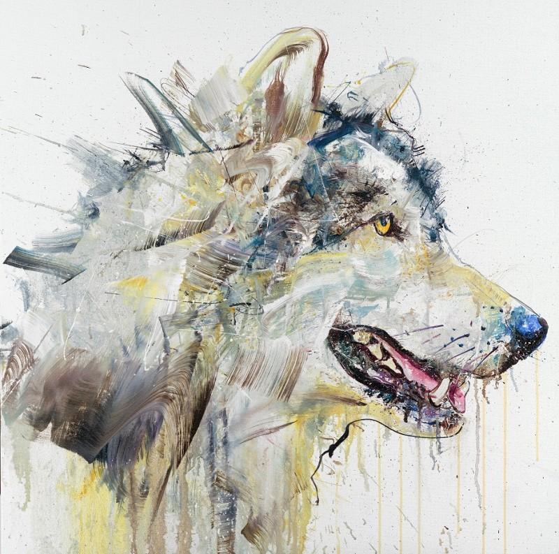 Dave White: Wolf