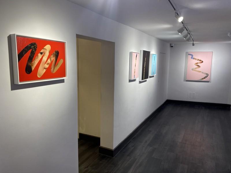 Linolago Installation 4