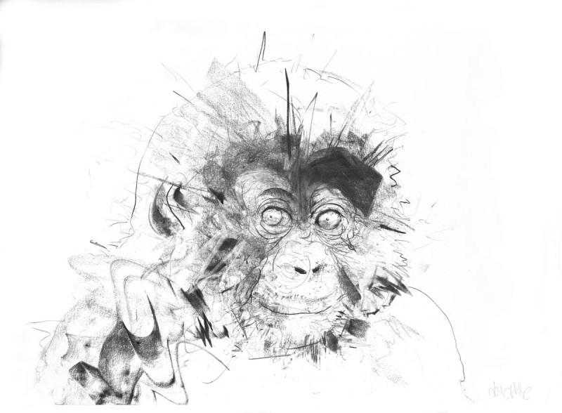 Dave White, Baby Gorilla, 2017