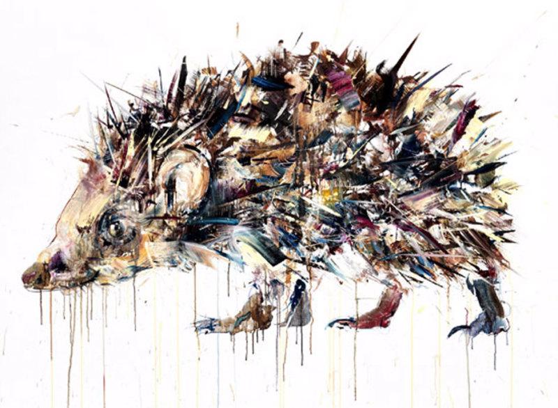 Dave White, Hedgehog XL