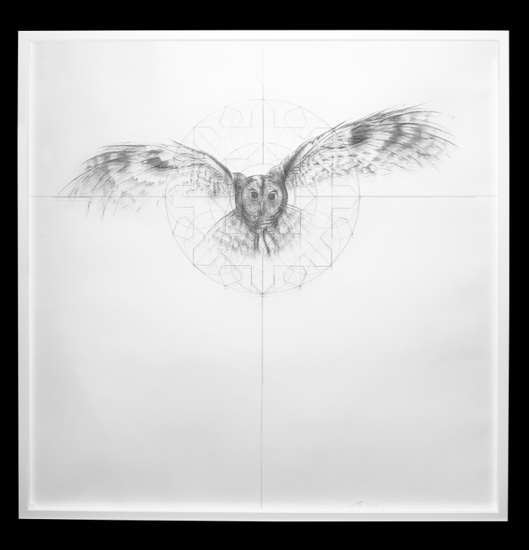 Jessica Albarn, Owl Fractal Star