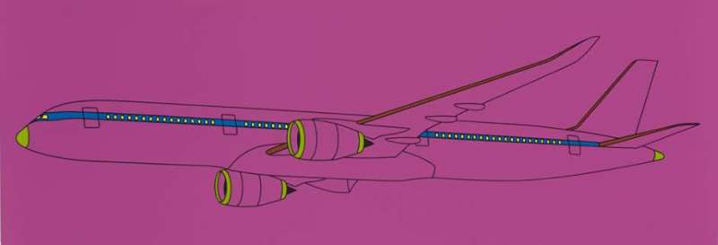 Michael Craig-Martin, Framed Airplane