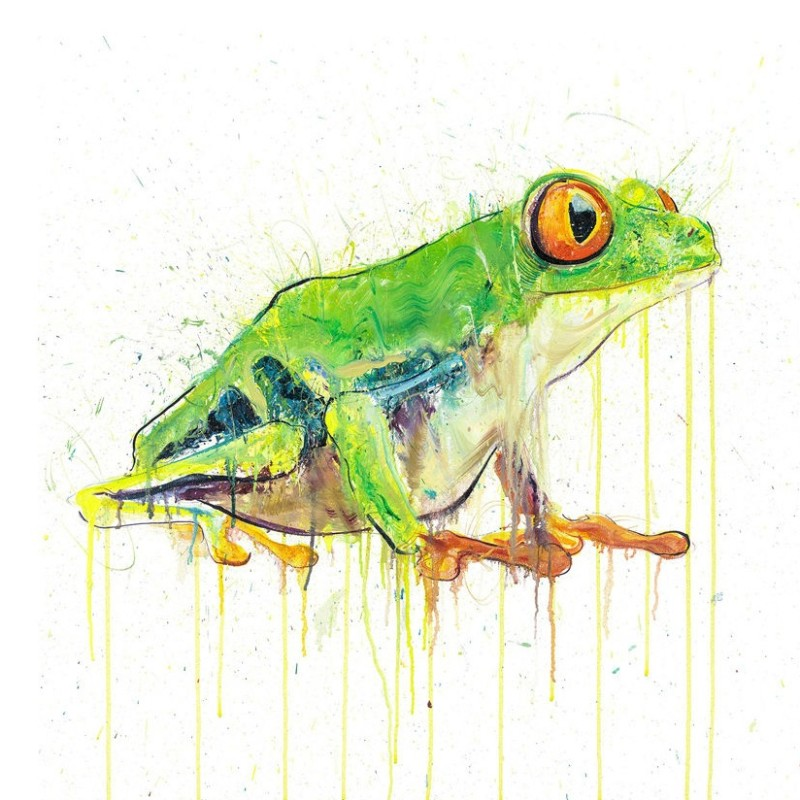 Dave White, Tree Frog