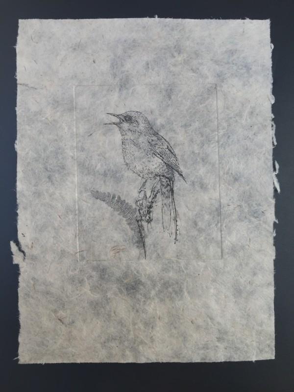 Jessica Albarn, Wren