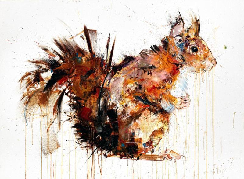 Dave White, Squirrel XL