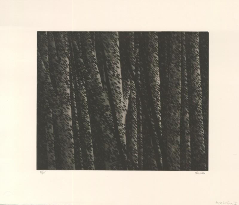 <span class=%22title%22>Forest Nocturne II<span class=%22title_comma%22>, </span></span><span class=%22year%22>2000</span>