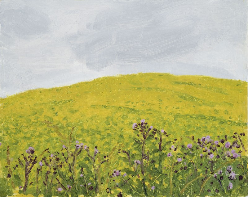 <span class=%22title%22>Yellow Hill and Flowers<span class=%22title_comma%22>, </span></span><span class=%22year%22>2017</span>