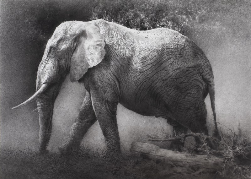 <span class=%22title%22>Elephant<span class=%22title_comma%22>, </span></span><span class=%22year%22>2005</span>