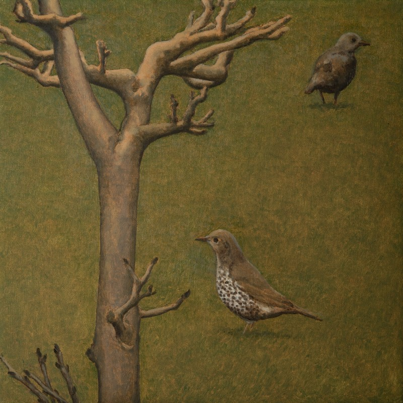 <span class=%22title%22>Mistle Thrush and Tree<span class=%22title_comma%22>, </span></span><span class=%22year%22>2018</span>