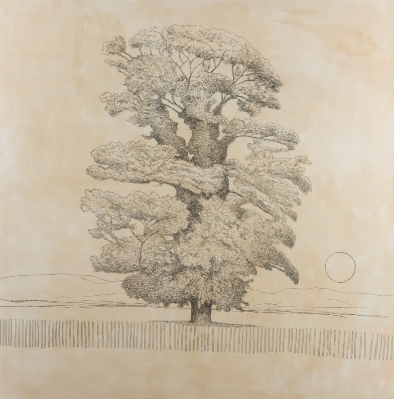 <span class=%22title%22>Sycamore Tree<span class=%22title_comma%22>, </span></span><span class=%22year%22>2019</span>