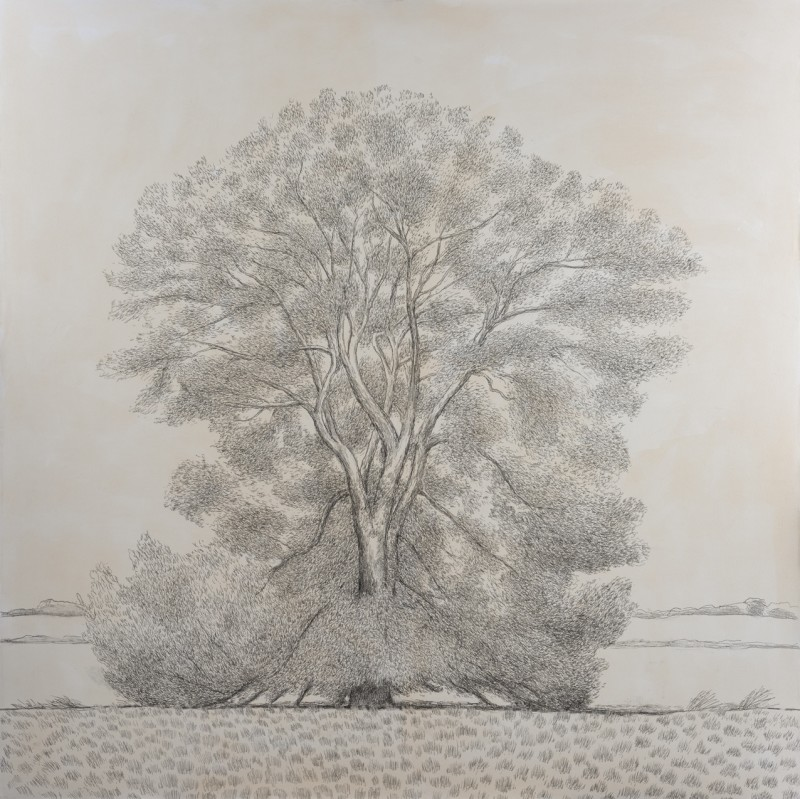 <span class=%22title%22>Willow Tree<span class=%22title_comma%22>, </span></span><span class=%22year%22>2019</span>