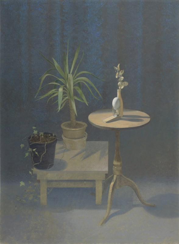 <span class=%22title%22>Still Life by Artificial Light<span class=%22title_comma%22>, </span></span><span class=%22year%22>1990</span>