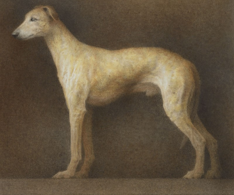 <span class=%22title%22>Dog<span class=%22title_comma%22>, </span></span><span class=%22year%22>2003</span>
