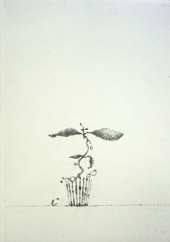 Lars Nyberg RE, Maev's Peculiar Plant