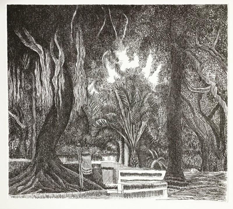 Paul Hawdon RE, Deserted Park, Cagliari