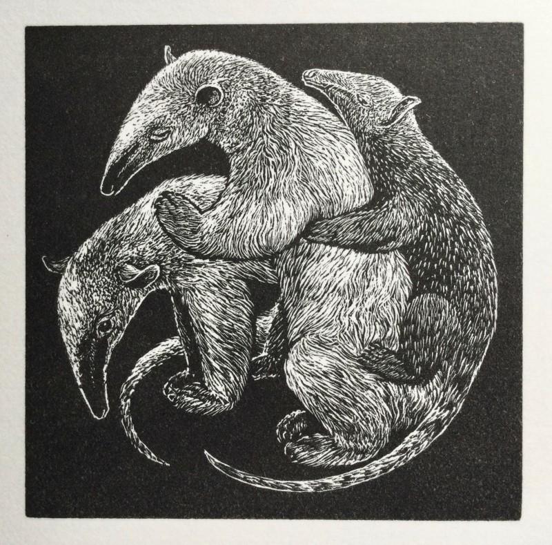 Ann Tout RE, Anteaters