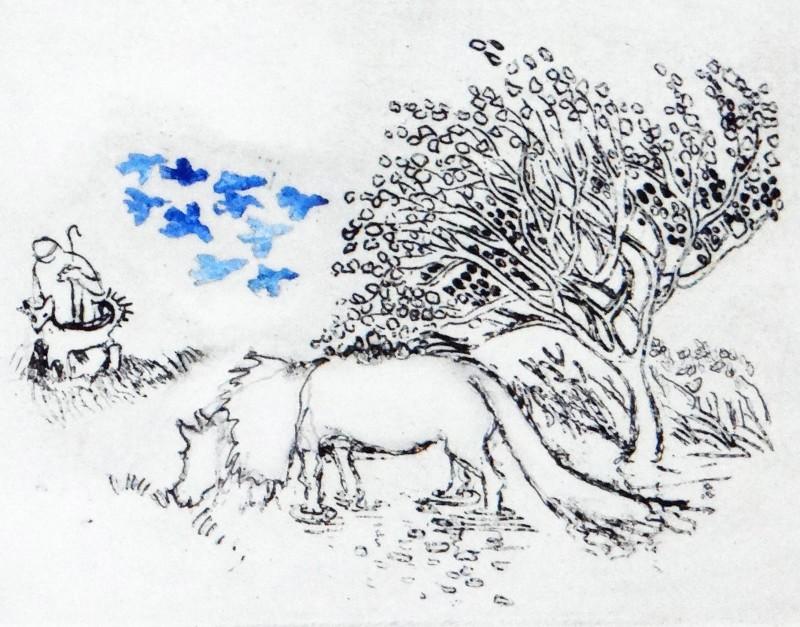 Rosamund Jones RE, Icelandic Pony