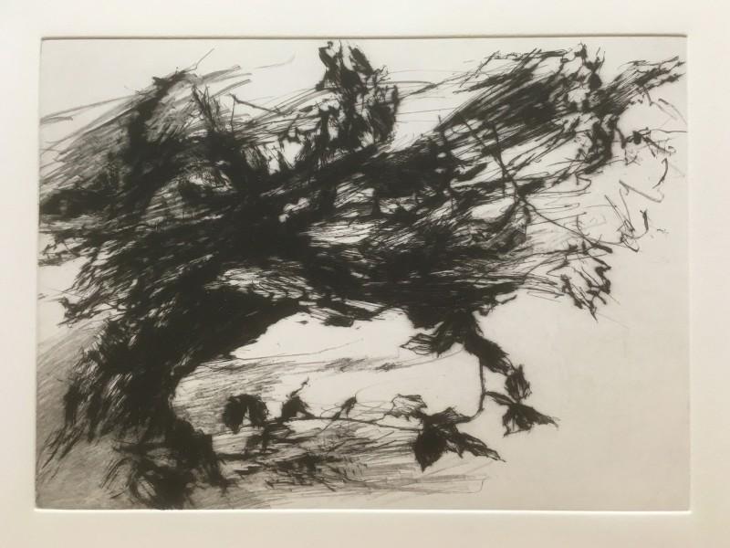 David Sully ARE, Cold Wind