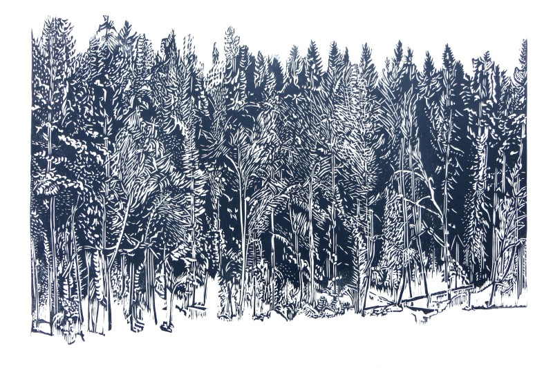 Sasa Marinkov RE, Grey Forest
