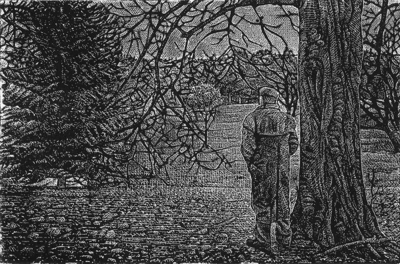Raphael Appignanesi ARE, The Wanderer