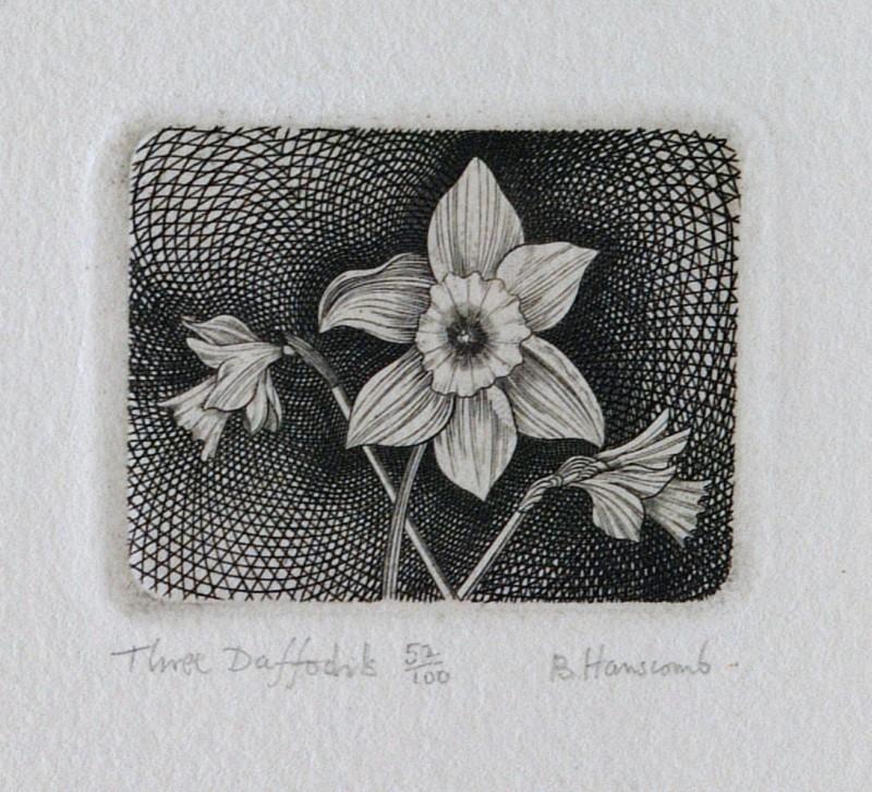 Brian Hanscomb RE, Three Daffodils