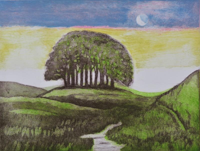Hilary Adair RE, Beechgrove Equinox Autumn