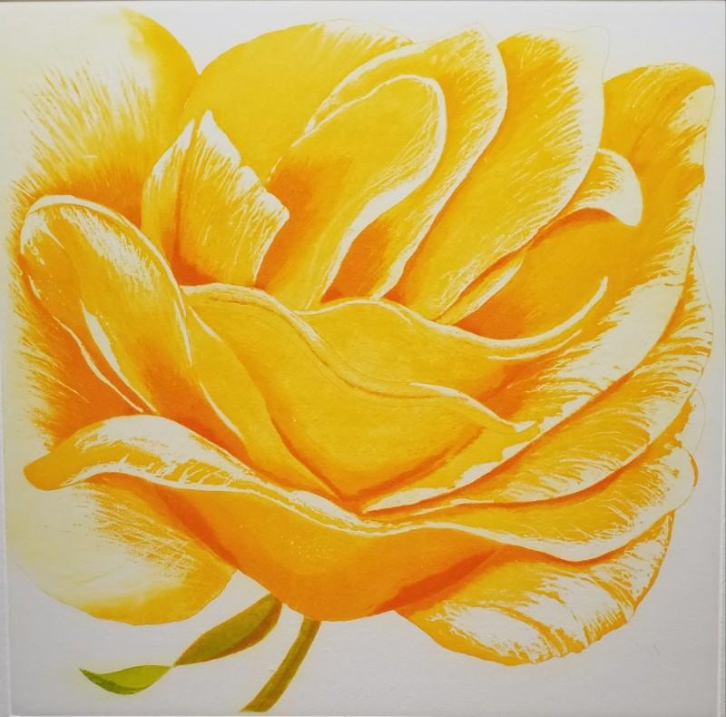 Grainne Cuffe ARE, A Golden Rose
