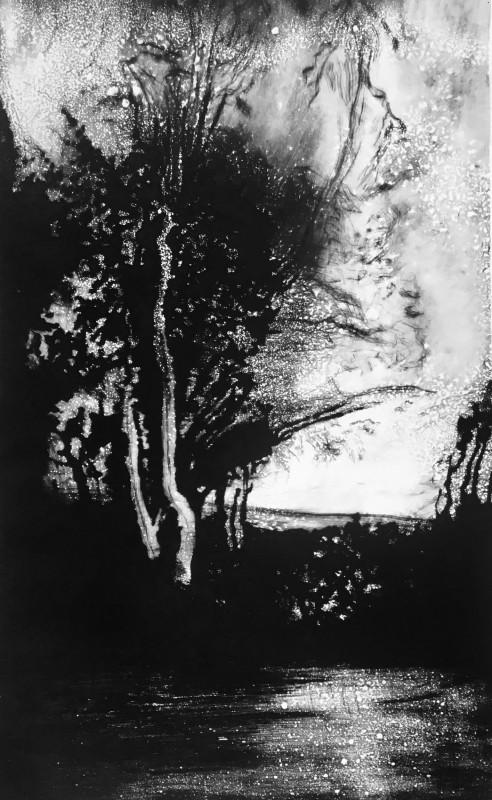 Edward Twohig RE, December Light, Master's Garden, Marlborough, Wiltshire
