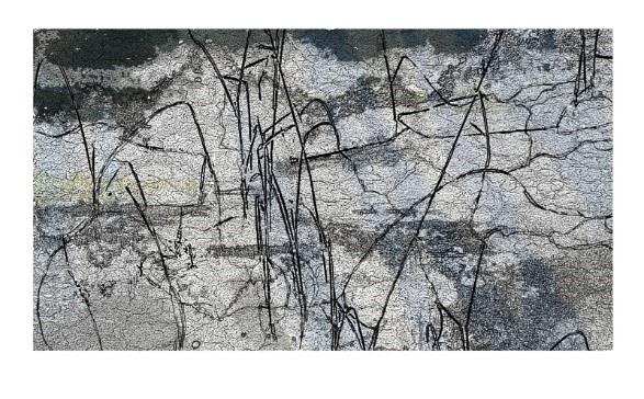 Mark Graver ARE, The Mirrored Lake