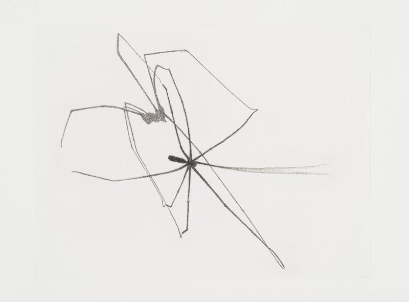 Paul Hawdon RE, Spider