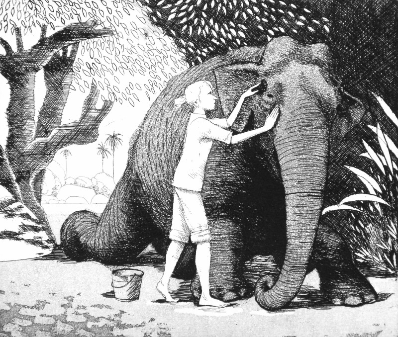 Frans Wesselman RE, Washing an Elephant