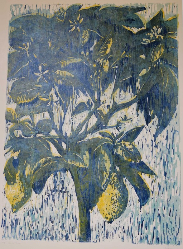Hilary Daltry RE, Lemon Tree