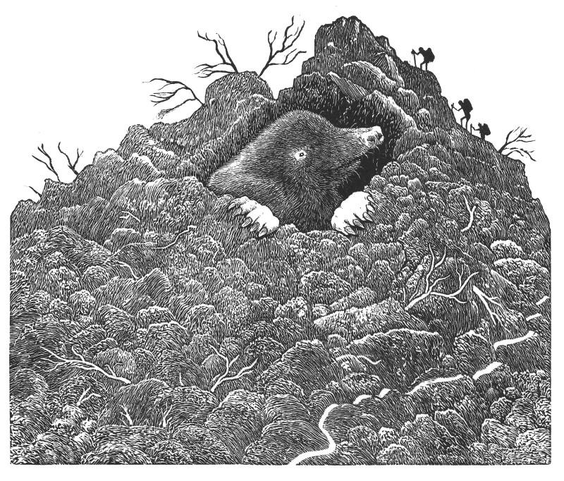 Jim Westergard RE, Making a Mountain Of a Molehill